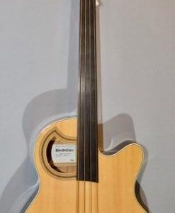 Akustik Bass im American Guitar Shop 33