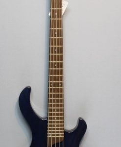 Esh Various 5 String